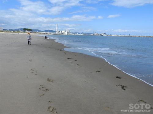 相馬の海岸