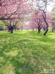 オニウシ公園(09)