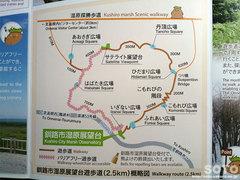 湿原探勝歩道(12)