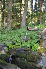 沼袋の名水(湧水)