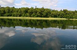 阿寒湖カヌー体験(7)