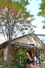 十和田湖-休屋(1)