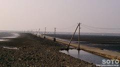 住吉海岸公園(3)