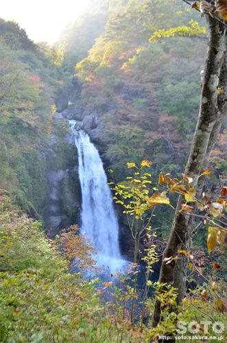 秋保大滝の紅葉2014
