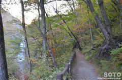 秋保大滝(遊歩道)