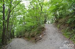 石鎚山(登山道)