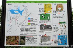 釧路市丹頂鶴自然公園(説明板)