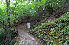 石鎚山(登山道帰り)