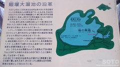 鶴の舞橋(4)