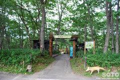 釧路市動物園(北海道ゾーン入口)
