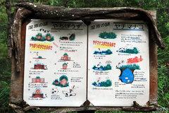 釧路市動物園(やちぼうずとやちまなこ)