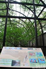 釧路市動物園(シマフクロウ檻)