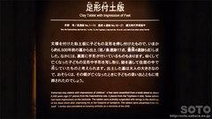 縄文文化交流センター(5)