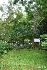 ヒョウタン沼(2)
