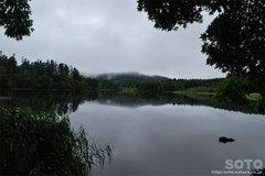 ヒョウタン沼(4)