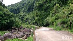 白水の滝(遊歩道)