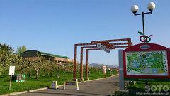 りんご公園(2)