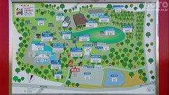りんご公園(3)