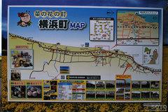 横浜町の菜の花(看板)