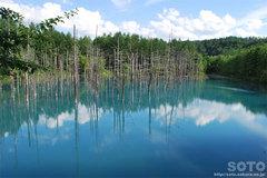 青い池(4)
