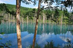 青い池(6)
