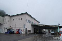 羅臼漁港見学(1)