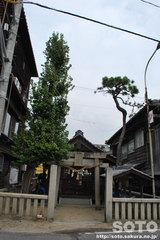 竹原の町並み(1)