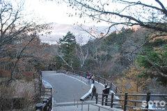 竜頭ノ滝(展望台)