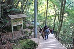 浄蓮の滝(2)