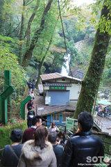 浄蓮の滝(4)