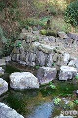 蓮の郷(水源)