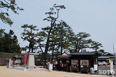 松江城(観光案内所)
