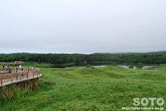 知床五湖 高架木道(展望所)