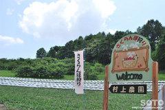 村上農園(看板)