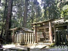 高野山(4)