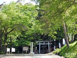 桜松公園(1)