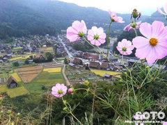 白川郷(城山天守閣展望台から2005)