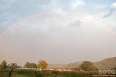 2014/10/08の虹
