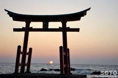 鳥居と夕陽(2)