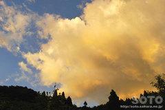 黄色く染まった雲(1)