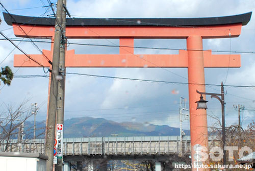 2011/11/20 虹(1)