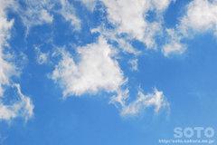 2011/11/22の彩雲(2)