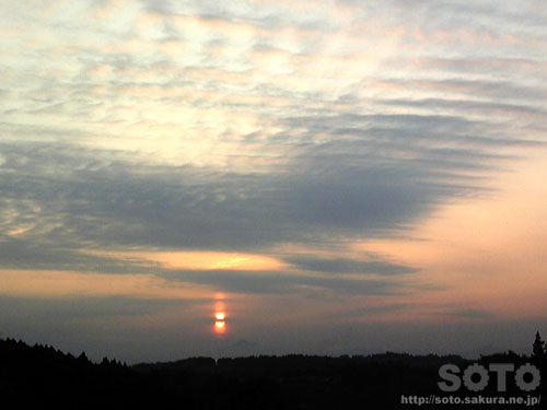 夕陽(20111228-1)