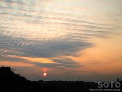 夕陽(20111228-3)