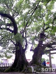 補陀洛山寺(2)