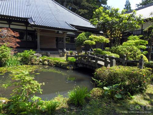 永泉寺(5)