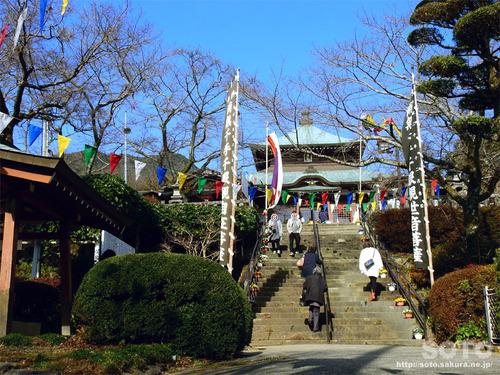 相良寺(2020-1)