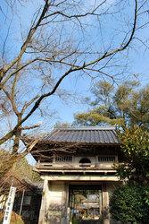 日輪寺(門)