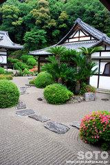 根来寺(庭園)