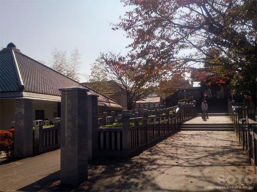泉岳寺(14)